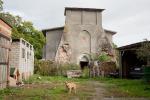 Кладбище домашних животных: что стало с кирхой XIV века в поселке Муромское