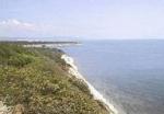 Проект Остров Федерация возьмут под экологический контроль