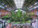 В Марьиной Роще расцветут висячие сады. В ближайшие четыре года в микрорайоне на cеверо-востоке столицы построят многоэтажки «в тропиках»