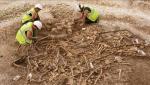 Развитие британской экономики под угрозой из-за дефицита археологов