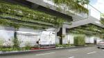 Висячие сады в Сан-Паулу будут фильтровать 20% загрязненного городского воздуха