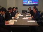 Пилотной площадкой для реализации японских проектов развития городской среды станет Воронеж