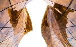 Пластмассовый мир победит: какими будут строительные материалы будущего?