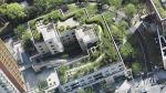 Москву озеленят по вертикали