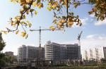 Территория Ховринской больницы может стать стартовой площадкой по программе реновации