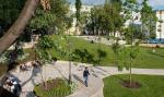 Что нам стоит парк построить