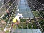 В Китае открыли 300-метровый стеклянный мост между островами на высоте 150 метров
