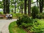 """Жители Химок протестуют против застройки местного парка """"Дубки"""""""