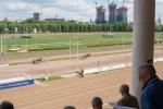 «Ему конец»: Кто и как хочет застроить Московский ипподром