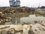 Прокуратура: руины замка Кёнигсберг угрожают здоровью калининградцев