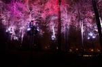 В чём проблема подсветки на Воробьёвых горах?