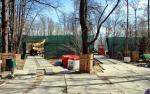 Без «дерева» в городе