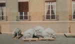 После реставрации в Выборге пропали балконы и позеленели белки