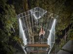 «Хрустальный» дом на дереве в Мехико