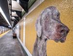 История мозаичных собак в нью-йоркское метро