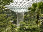 Лес в стеклянном ларце