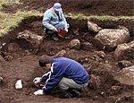 Под Запорожьем археологи откопали древний город