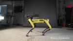 Американские инженеры представили робота-«собаку» для проведения авторского надзора