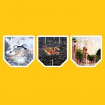 WAF: «Оскар», но архитектурный