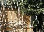 Все в сады. На XI Венецианскую архитектурную биеннале приглашает Алексей Тарханов