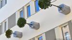 Альтернативное озеленение: сад - по вертикали, деревья - по горизонтали