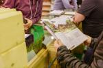 Загородный дом: итоги весенней выставки