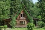 Поговорим о дереве: грани реставрации и современности