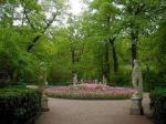 «Капуста» для Летнего сада