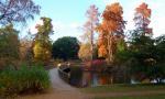 Хождение по водам в ботаническом саду