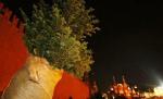 Центр Москвы засадят липами