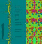 Архитектура адаптации. Интервью с Шулан Колатан и Уильямом Мак-Дональдом