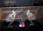 Секрет в урне. Художник Александр Бродский познакомил пермяков с изнанкой цивилизации