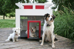 Немецкая компания продает особняки для собак