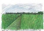 Стояние на Куликовом поле. Анна Толстова о фестивале ландшафтных объектов в Никола-Ленивце