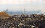 Генплан позеленеет. Экологи пытаются изменить градостроительные документы