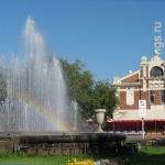 «Первомайский сквер — это винегрет». Архитектор Михаил Чаплыгин рассказал, как сделать Новосибирск красивым при помощи деревьев