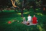 Отдохнуть от развлечений. Как намерены переоборудовать главные парки двух столиц, и что хотят от отдыха сами горожане