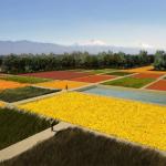 Мексиканский экопарк станет крупнейшим городским парком в мире