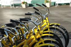 Как Петербург превратят в город велосипедистов