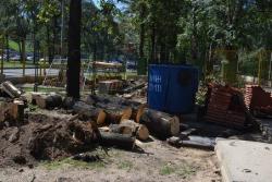 Деревья рубят ради метро