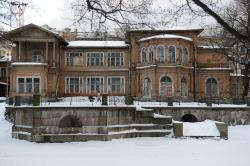 Петербург деревянный: чудом уцелевшие особняки разрушаются