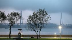 Парки Владивостока нуждаются в модернизации, считают эксперты