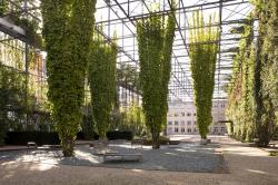 Цюрих. Парк MFO в районе Neu Oerlikon. Фото: Валерий Нефёдов, 2012