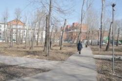 Судьба парков. Что нужнее Омску: развлекательные комплексы или деревья?