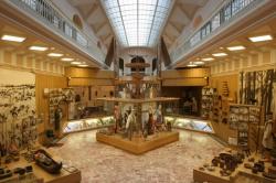 В Петербурге отмечают 150-летие архитектора, построившего первое музейное здание в России
