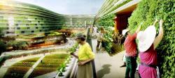 Homefarm – жилой комплекс для пожилых людей © SPARK