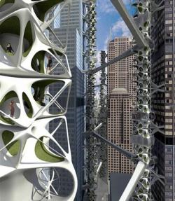 Вертикальная сеть влипла между небоскрёбами