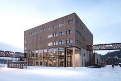 Университетский колледж Йёвика