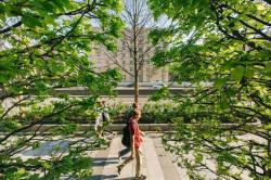 Архитектор в городе: взгляд без иллюзий