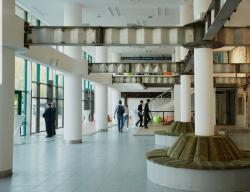 «Целинный» — это «Гараж» в Казахстане? В Алма-Ате открывают центр современной культуры